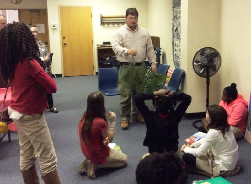 mcintosh 4h learning about pine trees